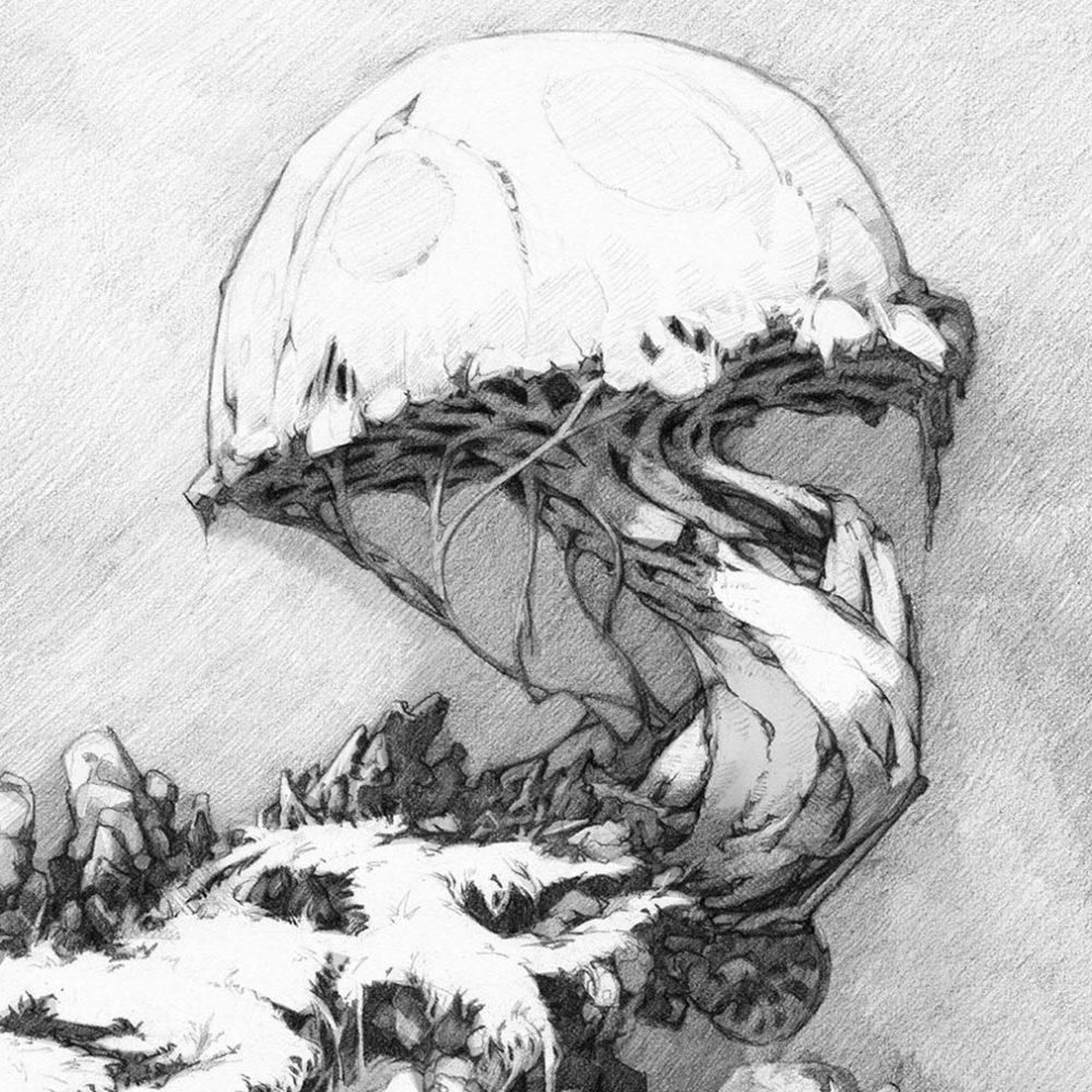 mushroom_web_square